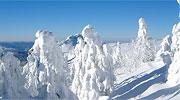 Winter Urlaub in Bayern