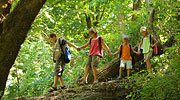 Wanderurlaub im Bayer. Wald